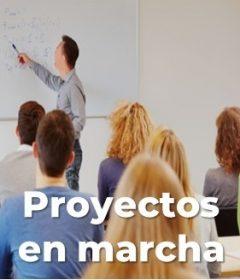 ACTIVIDADES. Proyectos 2.